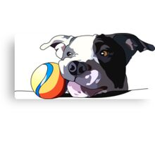 It's a dog's life Canvas Print
