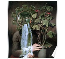 Looking at the Geranium. Poster