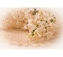 Pristine Lilacs! Photographic Print