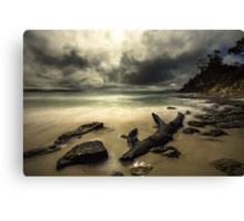 The Tempest Canvas Print