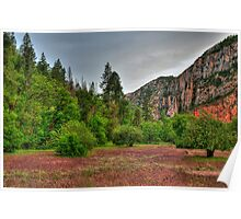 Canyon Orchards In Sedona Poster