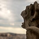 SCREAM from the Roof of Our Lady of Paris by Aleksandar Topalovic