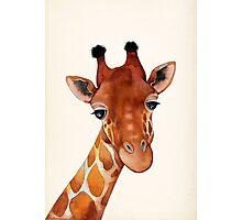Giraffe Watercolor Photographic Print