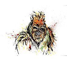 Gorilla Photographic Print