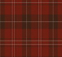 02869 Trumbull County, Ohio E-fficial Fashion Tartan Fabric Print Iphone Case by Detnecs2013