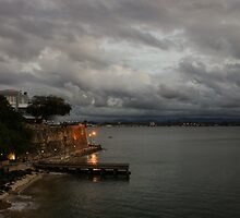 Stormy Puerto Rico  by Georgia Mizuleva