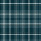 02871 Jackson County, Oregon E-fficial Fashion Tartan Fabric Print Iphone Case by Detnecs2013