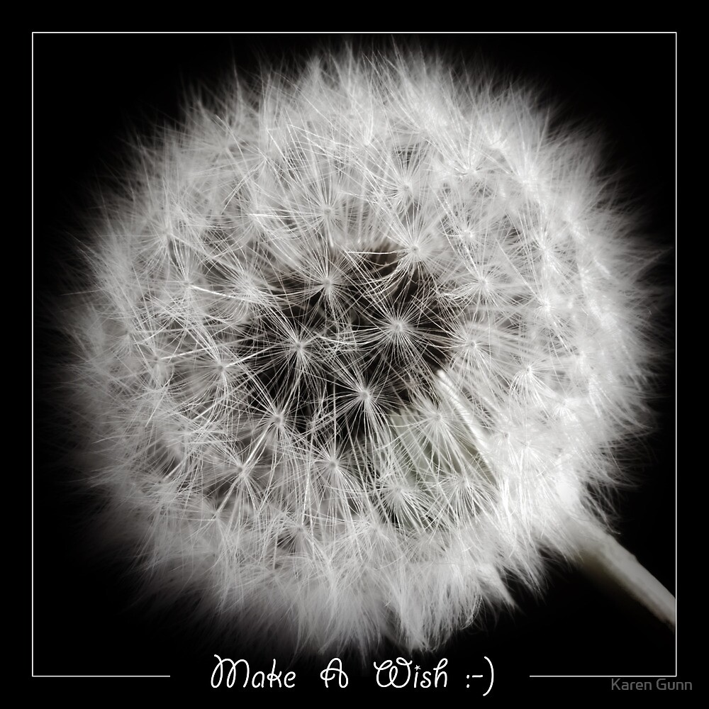 Make A Wish by Karen Gunn
