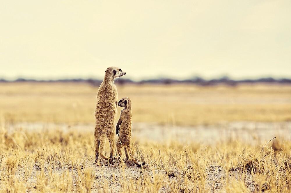 Yes Mum! by Lyn Darlington