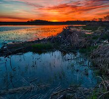 Saskatchewan Sunrises by Ian McGregor