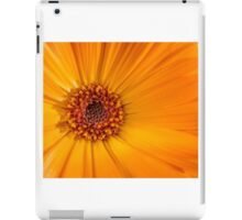 Orange 05 - Calendula / marigold iPad Case/Skin