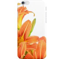 Orange 07 - Hemerocallis fulva / common daylily iPhone Case/Skin