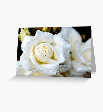 Raindrops and Roses Greeting Card