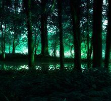 Eerie Morn by Karri Klawiter
