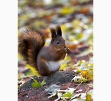 Autumn Squirrel Unisex T-Shirt