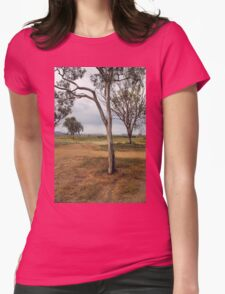 Scenic Splendour, Gateway to the Flinders Ranges Womens Fitted T-Shirt