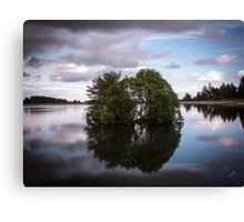Clatto Trees In The Water Canvas Print