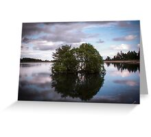 Clatto Trees In The Water Greeting Card