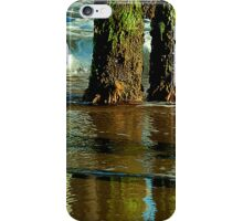Phone Colors (iPhone Cover) iPhone Case/Skin