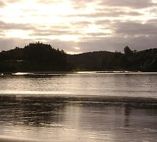 New Zealand beach evening by chelblack