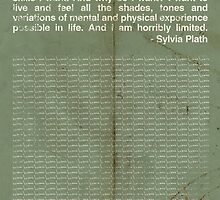 Sylvia Plath by homework