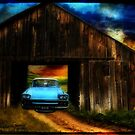 Vintage Barn Art by WishesandWhims