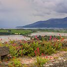 The Mournes from Dundrum Castle by Jon Lees