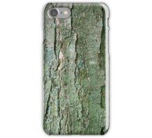 Sugar Maple Tree Bark iPhone Case/Skin