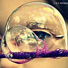 Through the Bubble by Estell