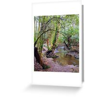 Nature's pallete, Mt Field National Park Greeting Card