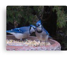 Blue Jays away Canvas Print