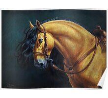 Warlander Stallion Poster