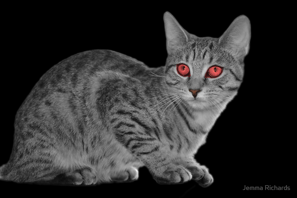 Look deep into my eye  by Jemma Richards