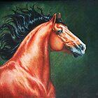Blood Bay Lusitano Stallion by SolaGratia