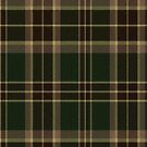 02883 Richmond County, Georgia E-fficial Fashion Tartan Fabric Print Iphone Case by Detnecs2013
