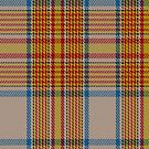 02884 Espana District Tartan Fabric Print Iphone Case by Detnecs2013