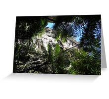 Carnarvon Gorge National Park QLD Greeting Card