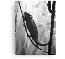 Hit the Road, Jack Canvas Print