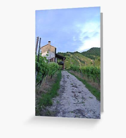 Vineyard Path Greeting Card