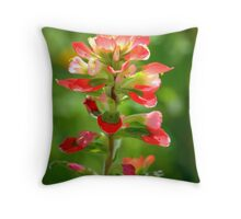 Painted With Light Close-Up Throw Pillow