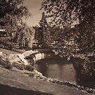 Como Park - Timeless by KBritt