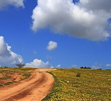 The Road to Heaven  by ibadishi