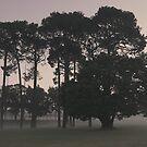 ghostly haze of Curtin Dawn by Brendon Fallon