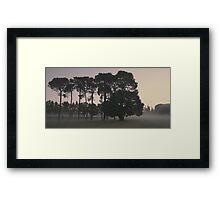 ghostly haze of Curtin Dawn Framed Print