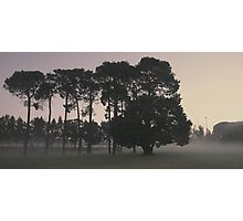 ghostly haze of Curtin Dawn Photographic Print