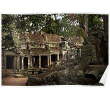Cambodia - Angkor - Ta Prohm #01 Poster