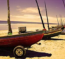 Boats on the Shore at Jericoacoara, Brazil by ibadishi