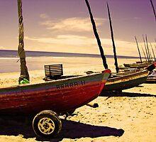 Boats on the Shore at Jericoacoara, Brazil by ibadishi