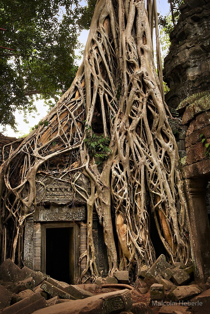 Cambodia - Angkor - Ta Prohm  #06 ... location for film Tomb Raider by Malcolm Heberle