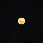 SUPERMOON     23/06/2013 by Jane  mcainsh